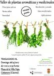 Cartel plantas medicinales Cañamero